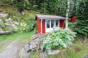 Bjørkeli (9).jpg