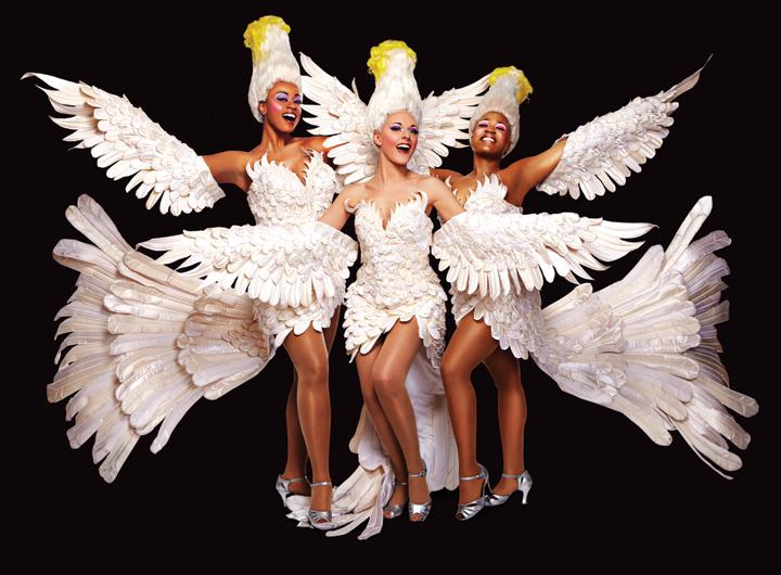Bway-Divas-Cockatoos-LOW-RESOLUTION