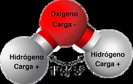 26-molecula-de-agua-300x190.png