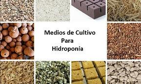medio-de-cultivo-para-hidroponía.jpg