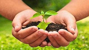 curso-online-de-agroecologia_amp_primari
