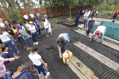 Xochimilco207.JPG