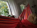Hangmat Slapen - alles over het slapen in hangmatten & hangmatconstructies