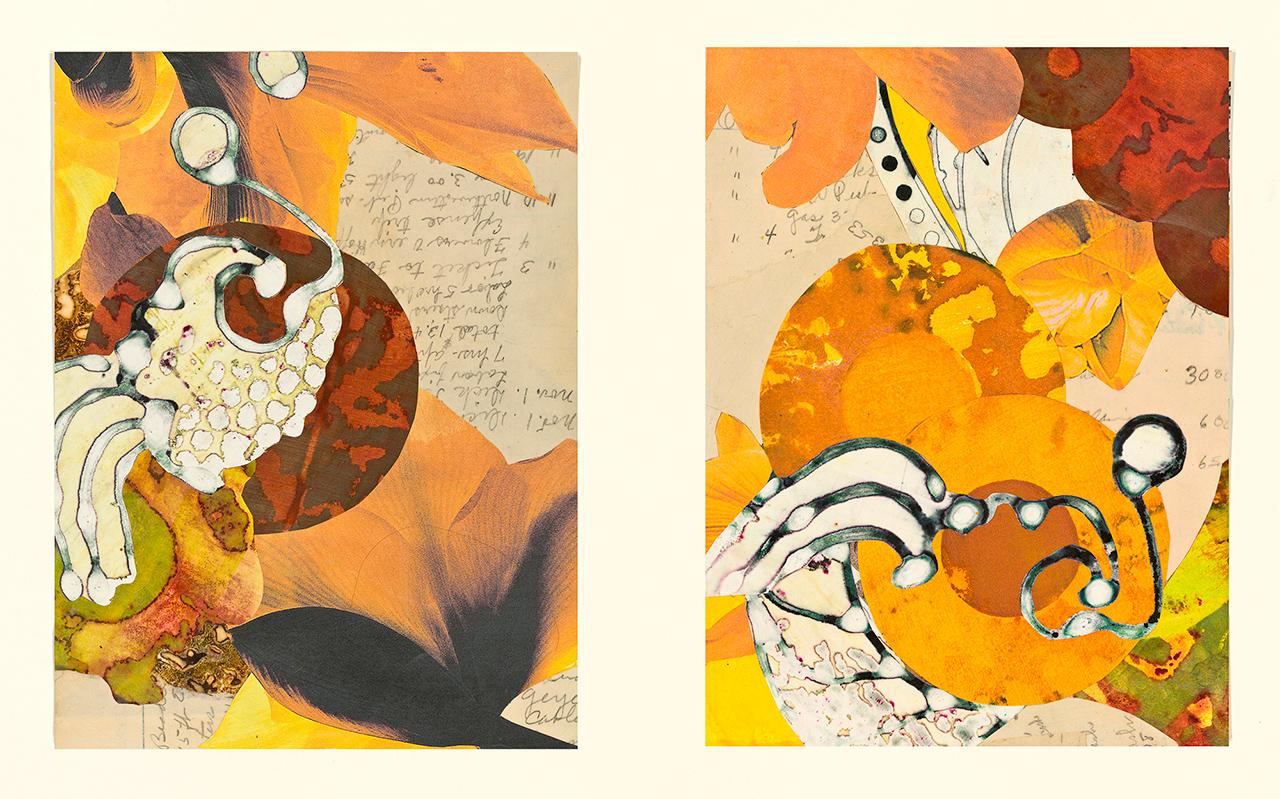 edna's accounts - orange circles