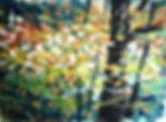 IMG_0408_edited_edited.jpg