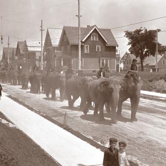 Barnum & Bailey Circus Parade