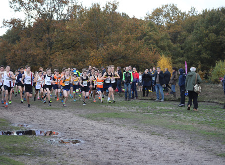 First boys' cross country match on Saturday 12th at Effingham Common