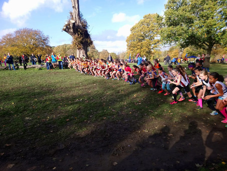 Surrey League XC - Junior Girls - Nov 18 - Nonsuch Park!