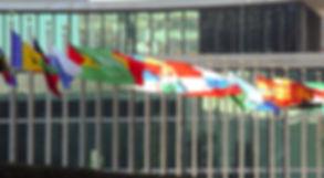 un-flags-1307795_edited.jpg