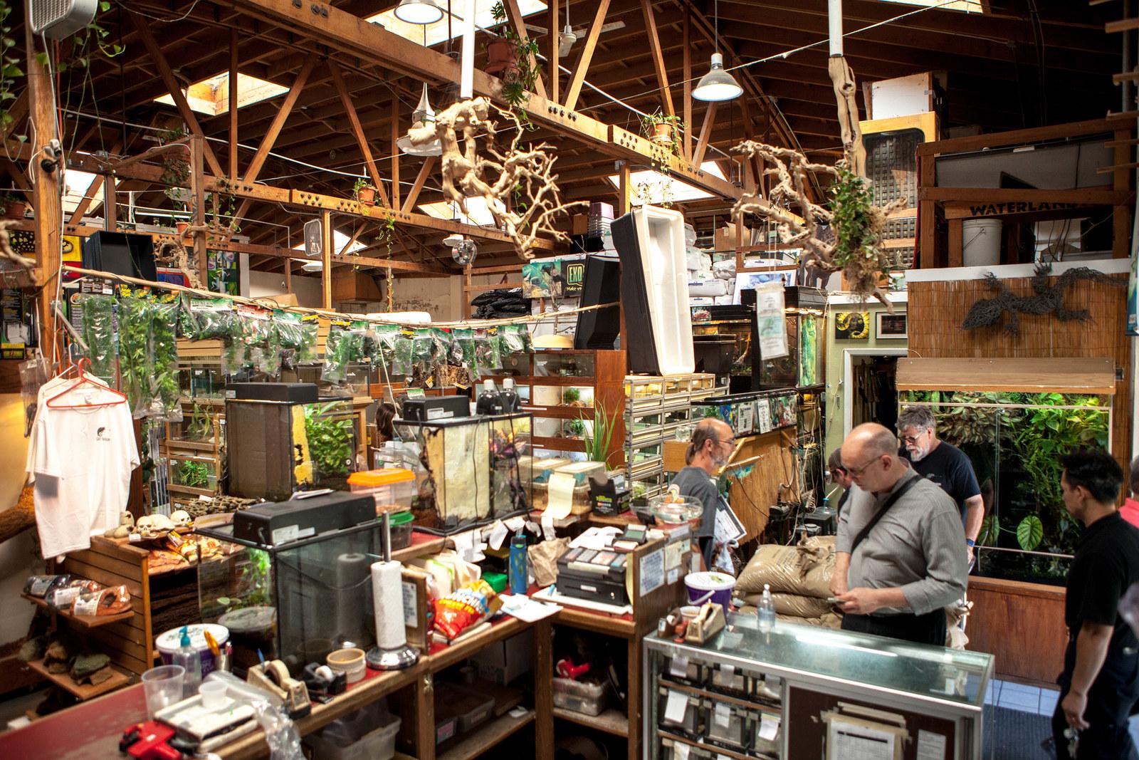 7b379015bd49fe Reptile Store East Bay