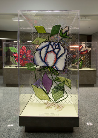 rosesm.jpg