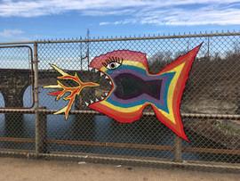 fire breathing rainbow piranha