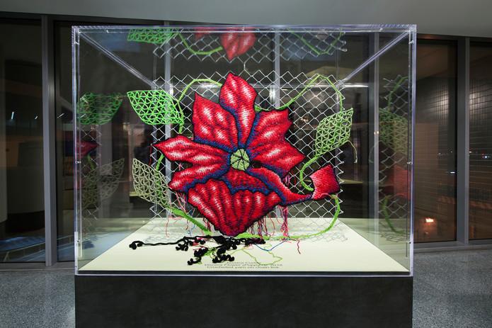 viscerflower_poppy.jpg