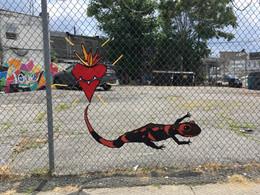 sacred hear fire salamander