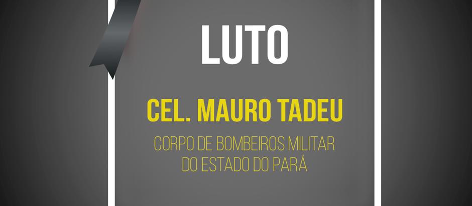 Cel. Mauro Tadeu do corpo de bombeiros militar do Pará morre em queda de aeronave