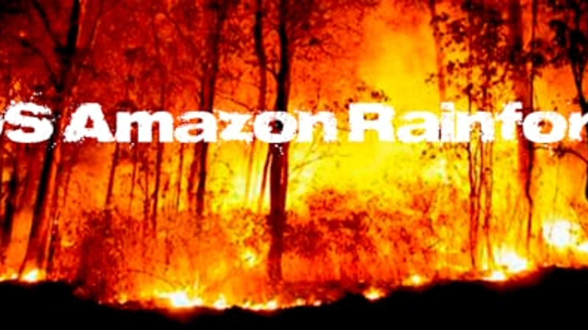 SOS Amazon Rainforest