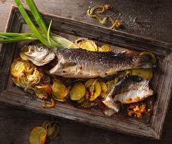 Food und Bild GmbH (4 von 23)