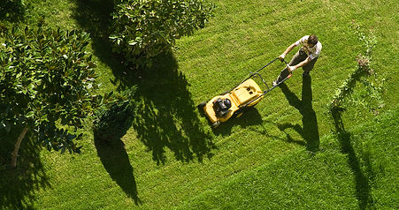 Man%20Mowing%20Lawn_edited.jpg