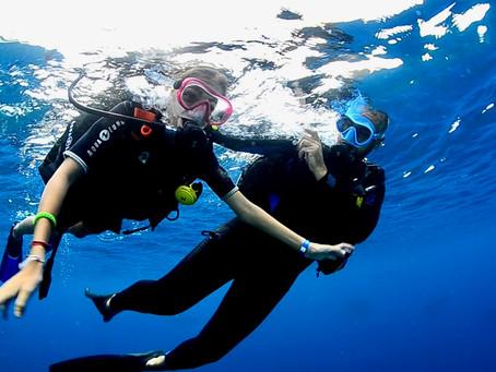 Débuter la plongée en Martinique