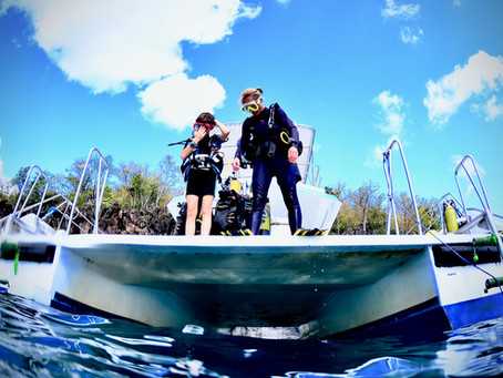Ré-ouverture de votre centre de plongée en Martinique