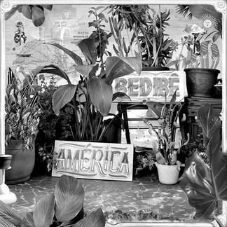 Bedibê: canções que contam histórias