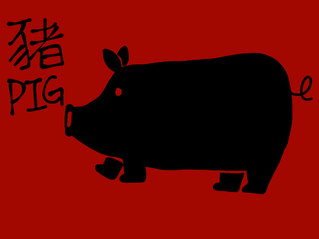 2018 Dog year forecast for PIG (2018 豬年運程)