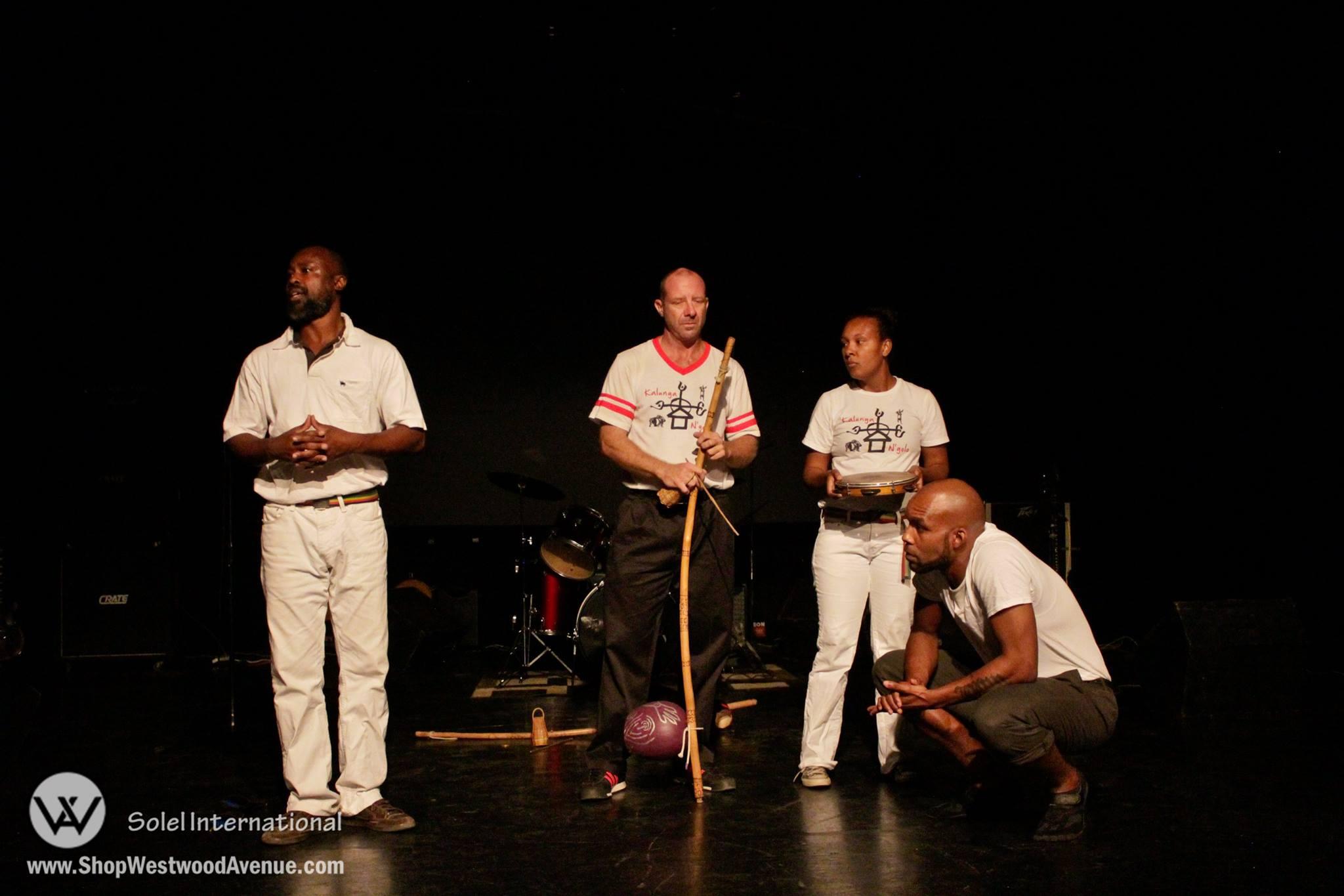 Capoeira Curriculum