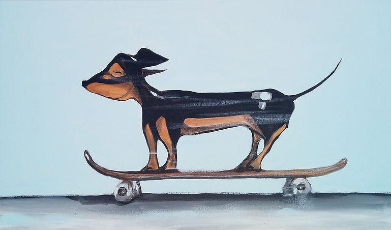 fast sausage, jane stadermann, sausage dog, skateboard, skateboarding dog, dauchaund, cool art