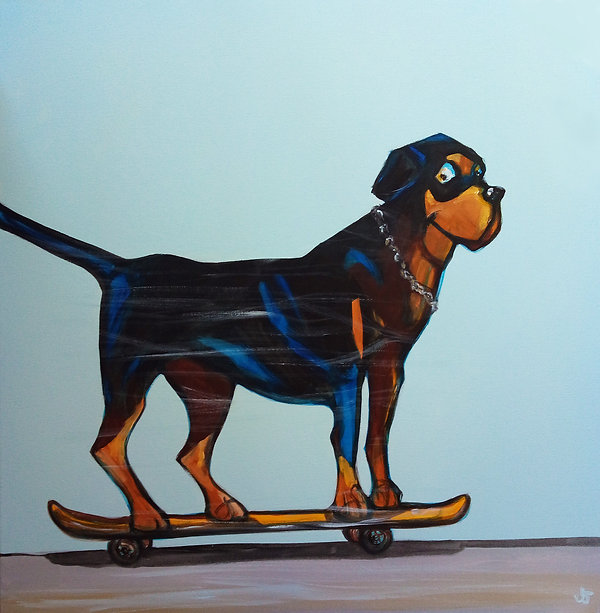 zoom, skateboard dog, rottweiller, Jane Stadermann, skater