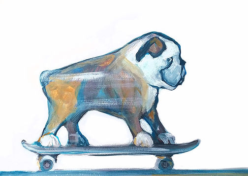 jane stadermann, bulldog skateboarding
