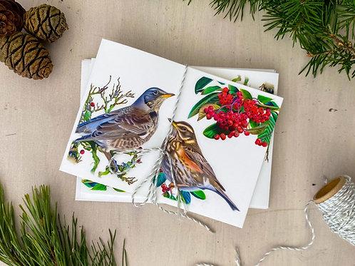 Winter Friends Greetings Card Bundle (5)