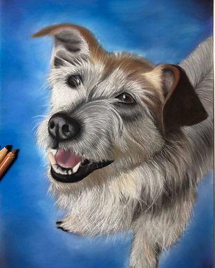 Sparky Portrait