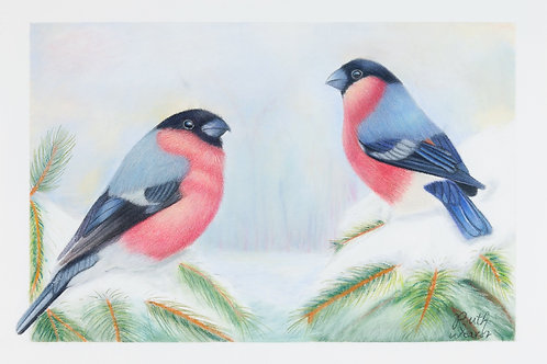 Winter Bullfinches Limited Edition Print