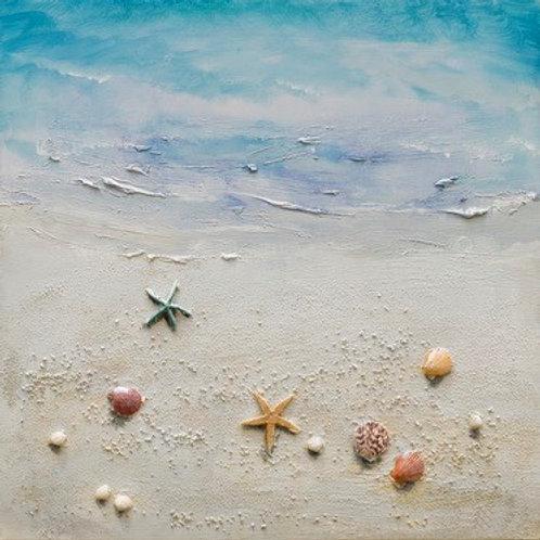Sea Shells on the Shore