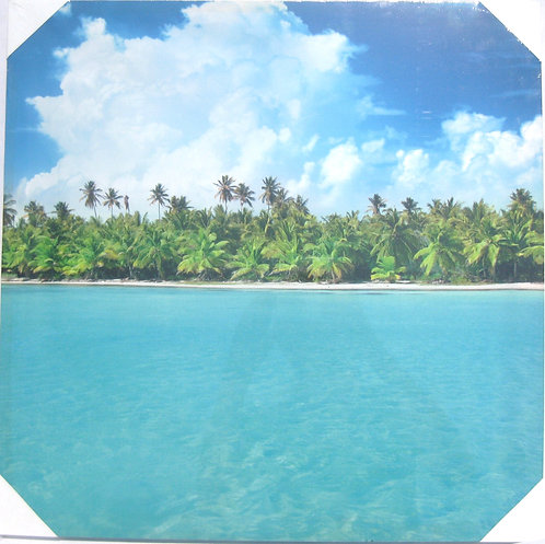 Beautiful Shoreling of Palm Trees 20x20