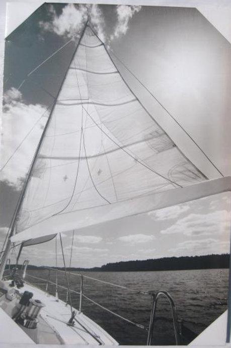 Sailing Black & White 1