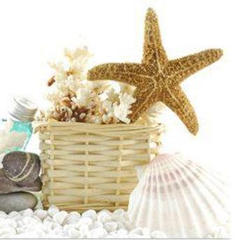 Basket of Sealife 1
