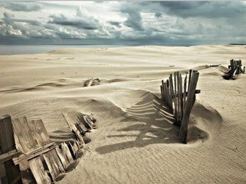Sand and Fence