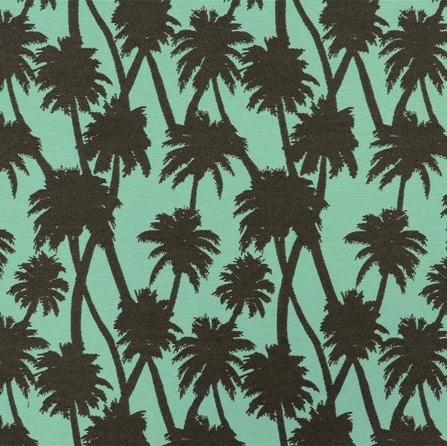 Little Palm Vapor