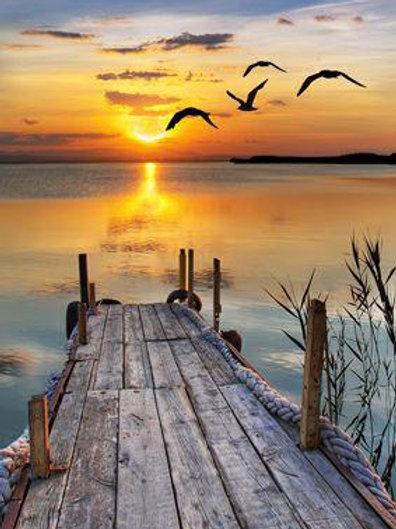 Birds in the Sunrise Over Pier