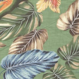 Tropical Sage