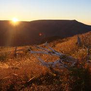 Mt Ernest-Laforce