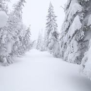Parc national des Mont-Valins