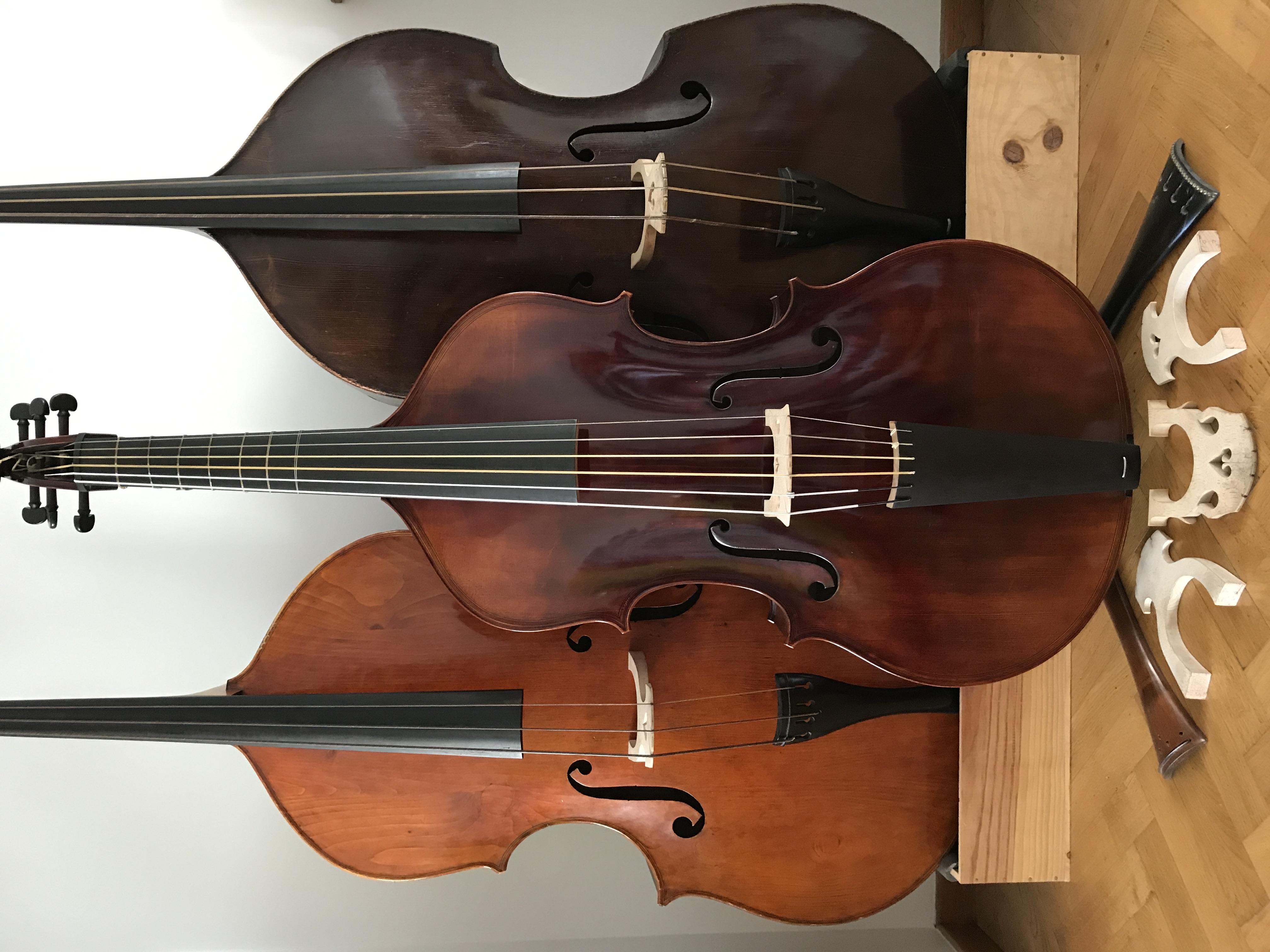 Trio bassi