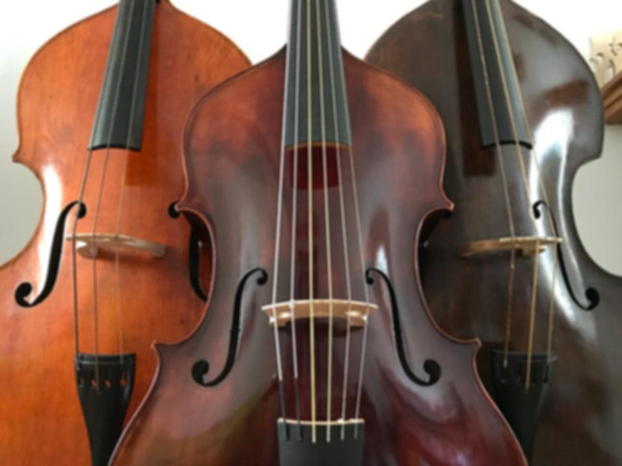 trio 12 corde.JPG