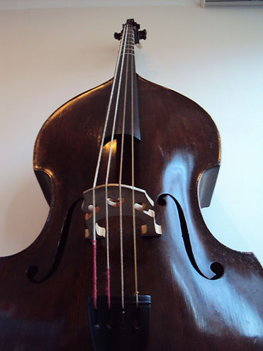 Violone (Anonymous)