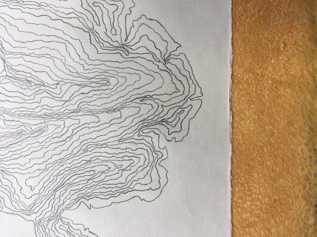 contours72.jpg