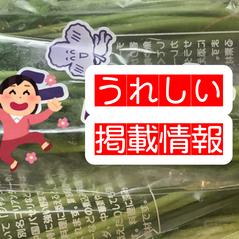 日本食糧新聞に当協会が取材を受けた記事が掲載されております🌿