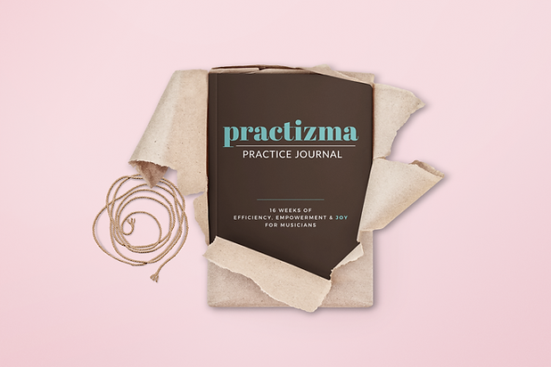 Copy of practizma unpacked.png