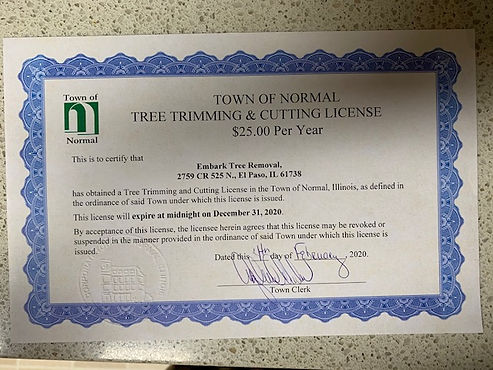 Town of Normal License